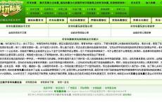 游戏私服开区网站100%纯绿色个性游戏主页源码分享