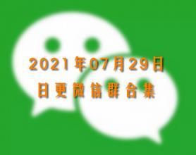 2021年7月29日最新微信群二维码合集